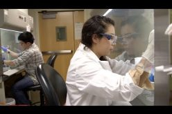High School Students Learning Stem Cell Research: The Future's Bright for Stem Cell Therapies