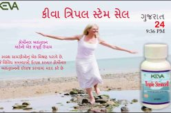 What are Stem cells in Gujarati