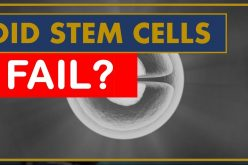 The Lost Promise of Stem Cells