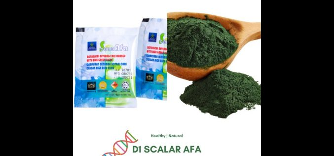 The Importance of Stem Cell and the role of D1 Scalar AFA