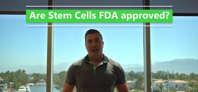 Are Stem Cells FDA Approved?