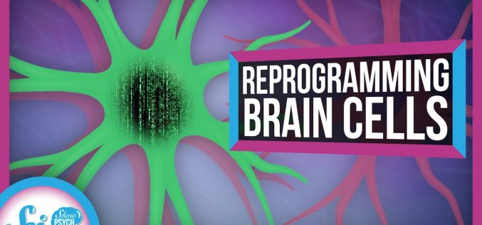 How to Reprogram a Brain Cell